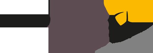 Endoaccess GmbH - Logo
